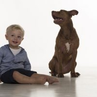 Kleinkind mit Hund, sitzend